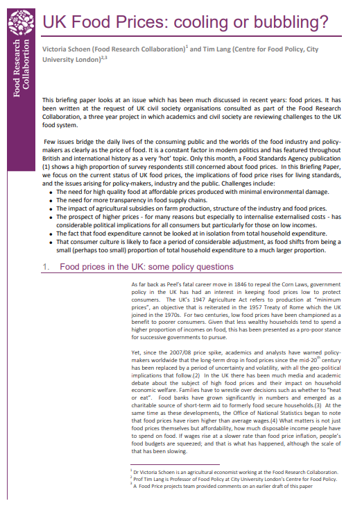 UK Food Prices: cooling or bubbling? – Food Policy Briefings